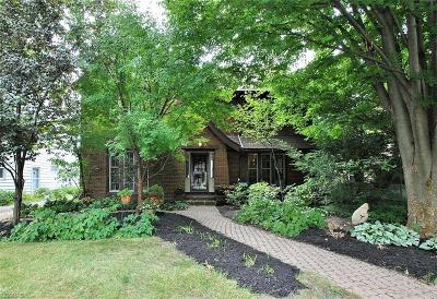 Shaker Heights Single Family Home For Sale: 3230 Chadbourne Rd