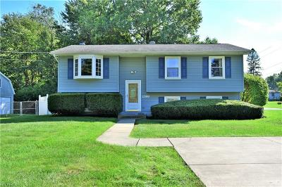 Youngstown Single Family Home For Sale: 2399 Birch Trace Dr