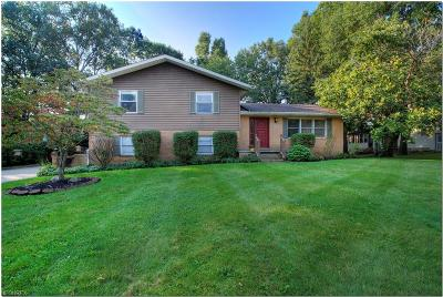 Summit County Single Family Home For Sale: 1444 Woodlake Blvd