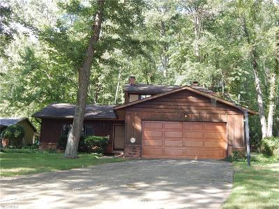 North Olmsted Single Family Home For Sale: 5599 Barton Rd