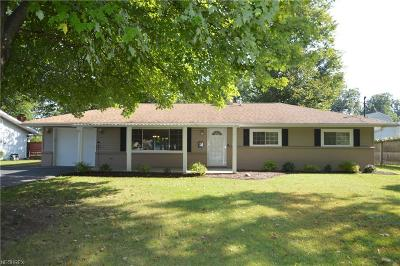 Boardman Single Family Home For Sale: 4227 Mill Trace Rd