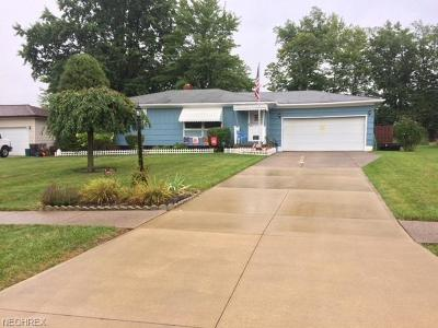 Strongsville Single Family Home For Sale: 13325 Tomson Dr