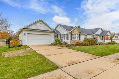 Painesville Township Single Family Home For Sale: 1654 Pirates Trail