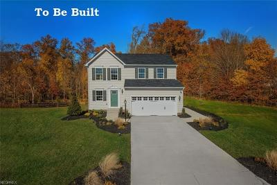 Twinsburg Single Family Home For Sale: 3612 Shady Timber Dr