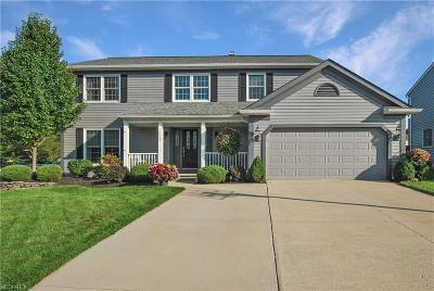 North Royalton Single Family Home For Sale: 19201 Tanglewood Dr