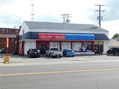 Conneaut Commercial For Sale: 241 State Street