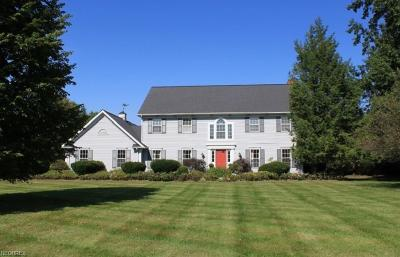 Geauga County Single Family Home For Sale: 21 Annandale Dr