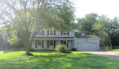 Brecksville, Broadview Heights Single Family Home For Sale: 3651 Elm Brook Dr