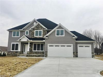 Lake County Single Family Home For Sale: 7902 Ironwood Ct