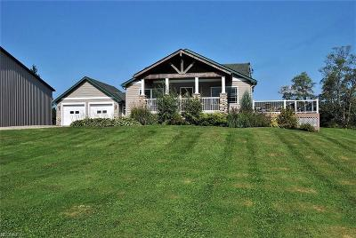 Geauga County Single Family Home For Sale: 13176 Gar Hwy
