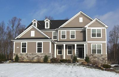 Geauga County Single Family Home For Sale: 7940 McFarland Rdg
