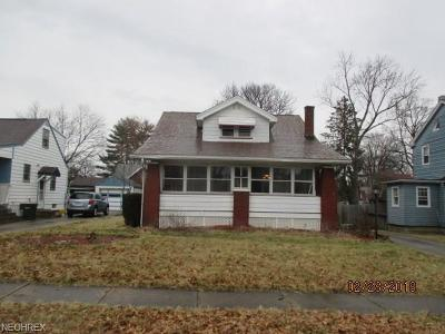 Boardman Single Family Home For Sale: 56 Shadyside Dr
