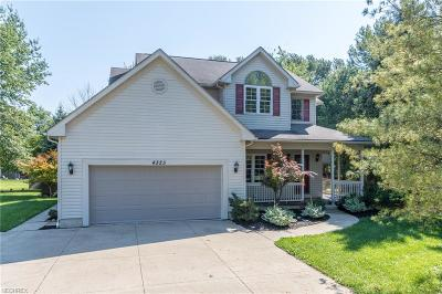 Summit County Single Family Home For Sale: 4323 Baird Rd