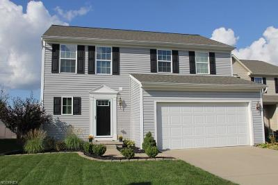 Summit County Single Family Home For Sale: 3137 Glenbrook Dr
