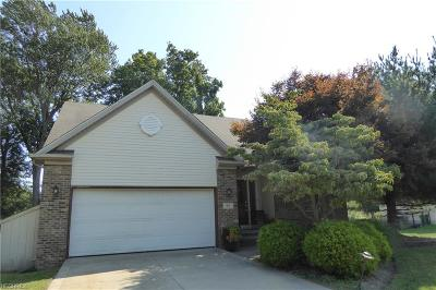 Painesville Township Single Family Home For Sale: 95 Helene Drive