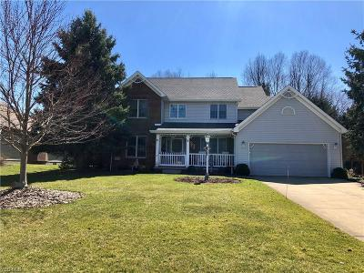 Youngstown Single Family Home For Sale: 607 Chestnut Ln
