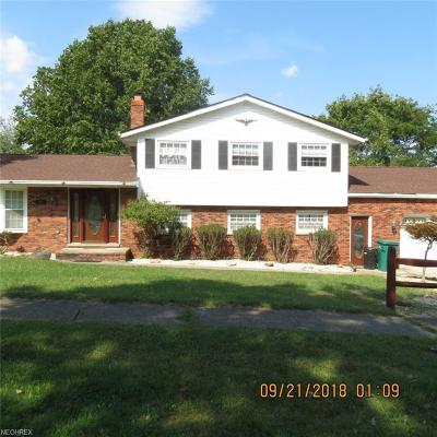 Seven Hills Single Family Home For Sale: 2907 Greenlawn Dr