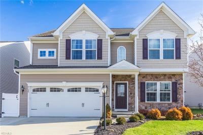 North Ridgeville Single Family Home For Sale: 9149 Stonegate Cir