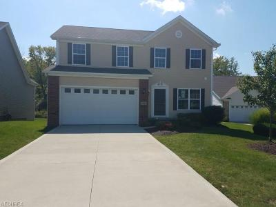 Summit County Single Family Home For Sale: 7633 Willow Ln