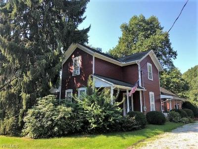 Chagrin Falls Single Family Home For Sale: 17458 Auburn Road