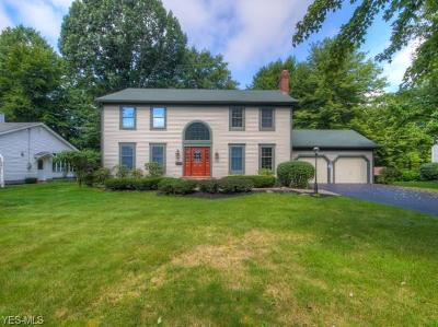 Boardman Single Family Home For Sale: 428 Rockland Dr