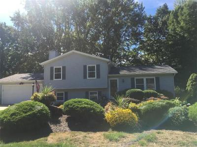 Mentor Single Family Home For Sale: 8510 Seaton Place