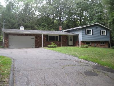 Willoughby Hills Single Family Home For Sale: 37250 Rogers Rd