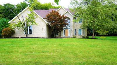 Broadview Heights Single Family Home For Sale: 9435 Woodchip Ln