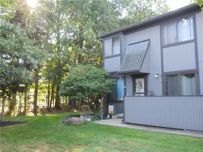 Willoughby Condo/Townhouse For Sale: 35375 North Turtle Trl #D