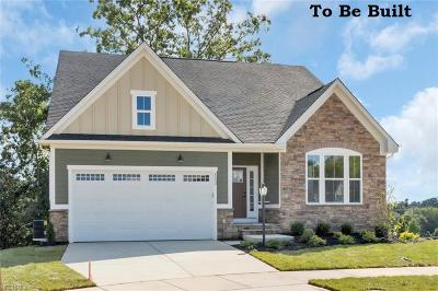 North Ridgeville Single Family Home For Sale: 7549 Greenlawn Dr