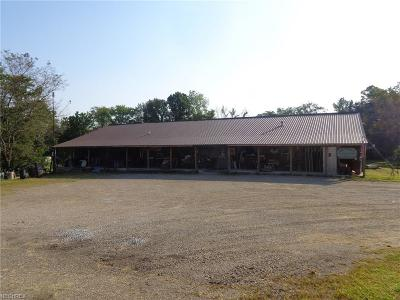 Commercial For Sale: 2617 State Route 416 Southeast