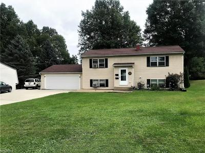 Youngstown Multi Family Home For Sale: 3907 South Schenley Ave #1