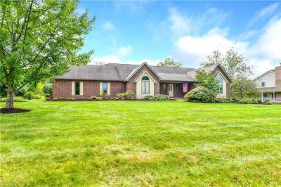 Canfield Single Family Home For Sale: 6061 Whispering Meadows