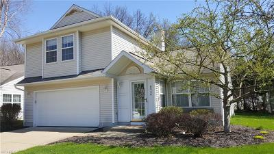 Olmsted Falls Single Family Home For Sale: 8950 Ashwood Ct