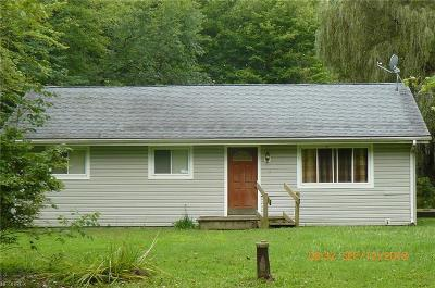 Painesville Single Family Home For Sale: 6584 Paine Rd