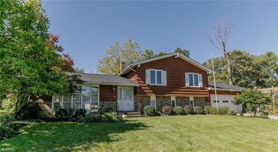 Broadview Heights Single Family Home For Sale: 5714 Breckswood Oval