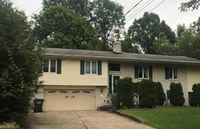 Wickliffe Single Family Home For Sale: 2639 Delaware St