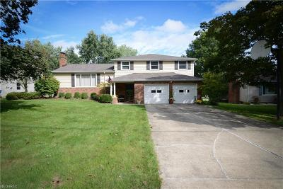 Canfield Single Family Home For Sale: 150 Village Blvd