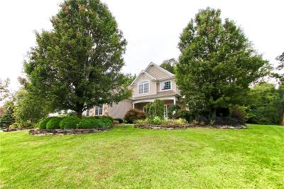 Concord Single Family Home For Sale: 10993 Stonewycke Dr