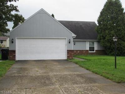 Elyria Single Family Home For Sale: 155 Hemlock Dr