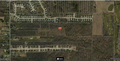 North Royalton Residential Lots & Land For Sale: 18101 State Rd