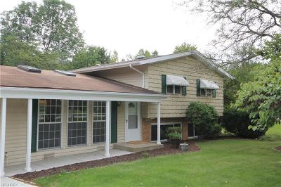 Brecksville Single Family Home For Sale: 7849 Cambridge Dr