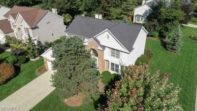 Strongsville Single Family Home For Sale: 19878 West Kerry Pl