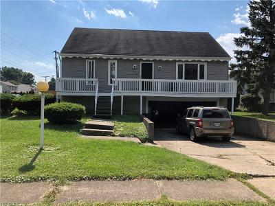Elyria Single Family Home For Sale: 735 Bowling Green Cir