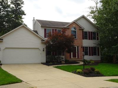 Parma Single Family Home For Sale: 9035 Sapphire Ct