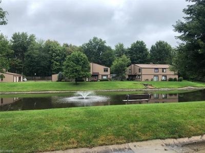 Olmsted Falls Condo/Townhouse For Sale: 26637 Lake Of The Falls Blvd