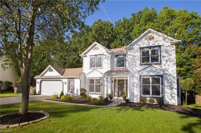 Single Family Home For Sale: 430 Nantucket Dr