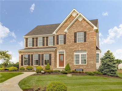 Ravenna Single Family Home For Sale: 2345 Cranberry Creek Rd