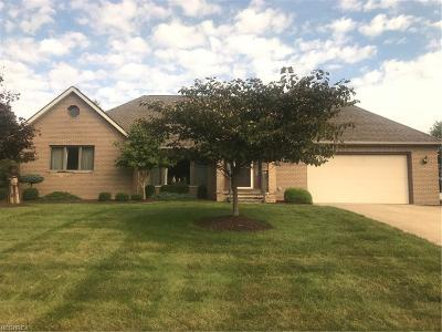 Broadview Heights Single Family Home For Sale: 8853 Michaels Ln