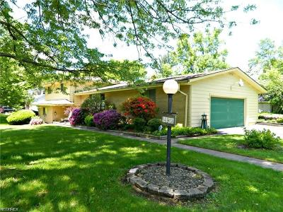 Youngstown Single Family Home For Sale: 490 Arbor Cir
